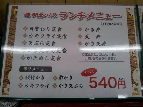 20150323_130039_R.jpg